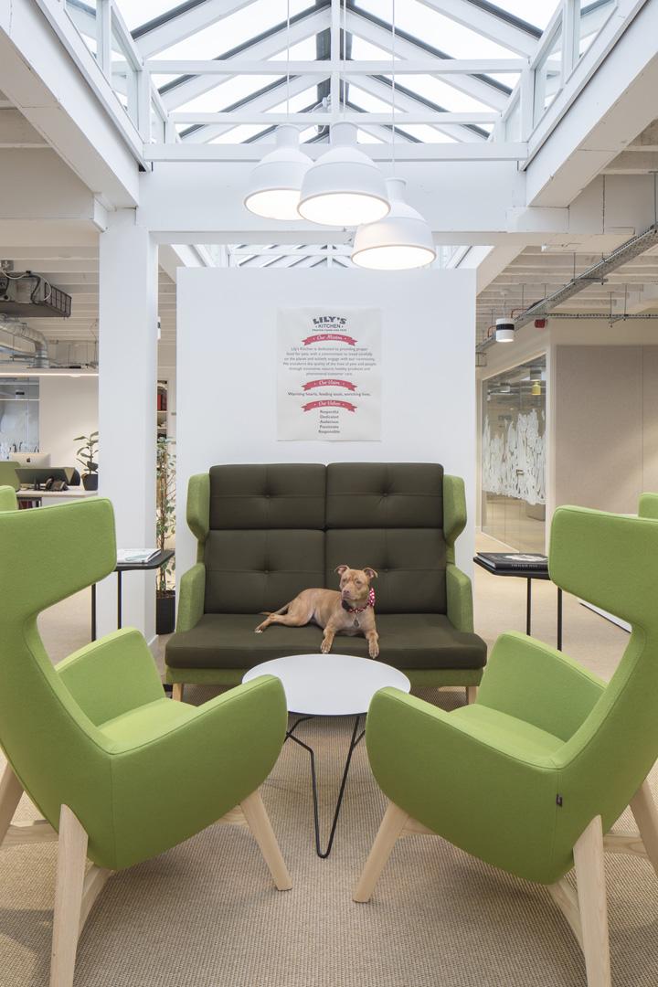汪星人驾到 宠物食品公司Lily's Kitchen伦敦办公设计欣赏