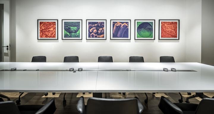 沿革与创新 法国百年酵母企业Lesaffre乐斯福中国总部设计欣赏